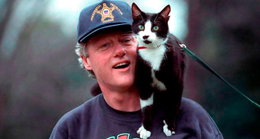Los gatos más famosos de la historia