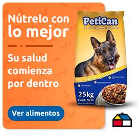 Banner alimento para mascotas
