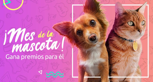 """Concurso """"Mes de las Mascotas Sodimac"""" para petlovers [finalizado]"""