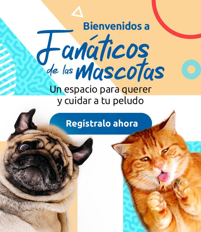 bienvenido fanáticos de las mascotas