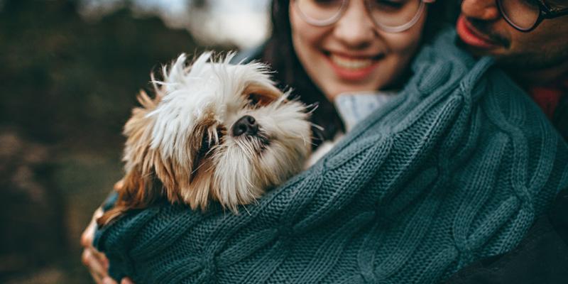pareja pet lover sonriendo sosteniendo a un perro en brazos