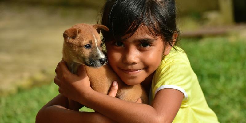 niña abrazando a un perro cachorro café