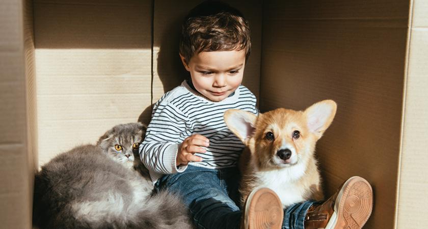 7 beneficios de las mascotas para los niños