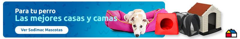 perro blanco acostado sobre una cama para perros fucsia